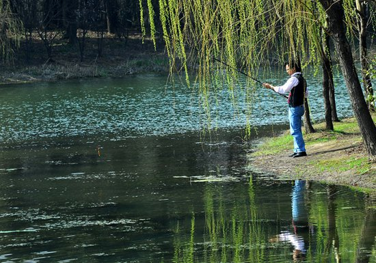适合春季野钓鲫鱼的三种钓点