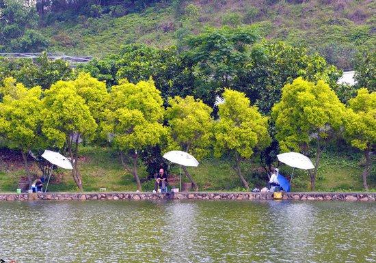 气温回升的早春季节如何钓鱼