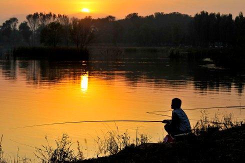 春季钓鲫鱼、鲤鱼、翘嘴鲌的技巧