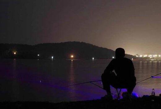 夏季夜钓的时间、钓点与装备选择