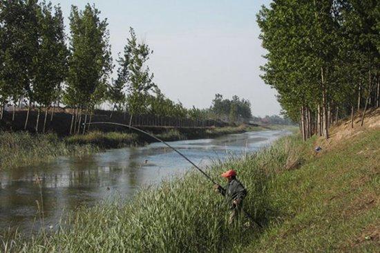野河溪流钓鲫鱼怎么选择钓点