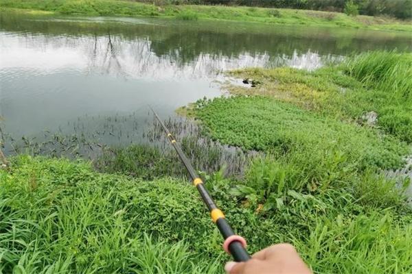 下雨过后河水涨,想要钓到更多的鱼,这些钓点老钓友抢着坐