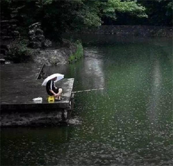 下雨怎么钓鱼 雨季钓鱼技巧