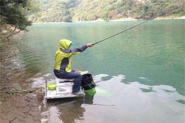 逗钓鲤鱼手法 老钓手必学技巧