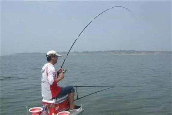 钓鱼黑话你知道什么意思么?可别被嘲笑了!