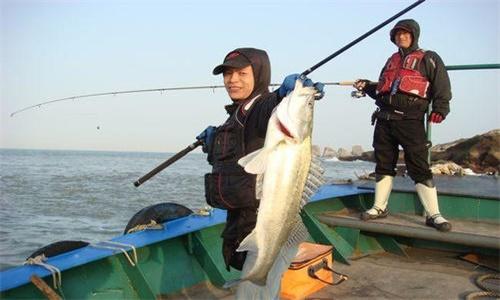 海钓鲈鱼应该注意什么
