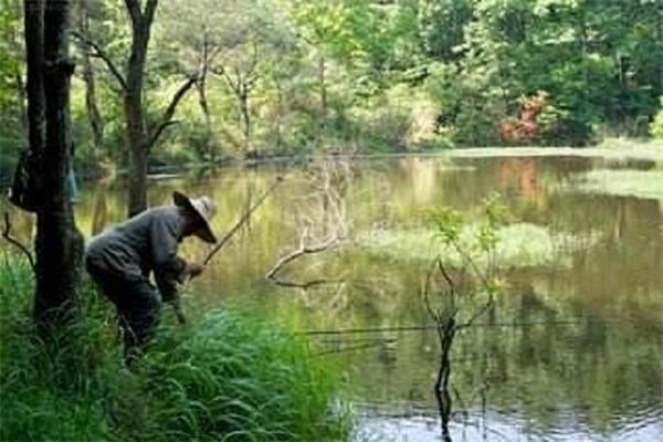野钓小技巧 新手再也不怕没有鱼了