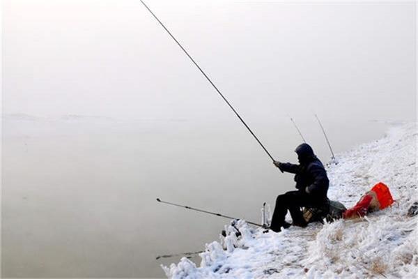 冬天怎么钓草鱼?资深钓手教你轻松钓!