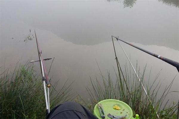初秋在水库钓鱼的时候,要掌握这些技巧