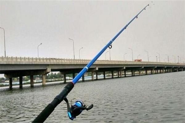 冬季蓝刀鱼钓法详解