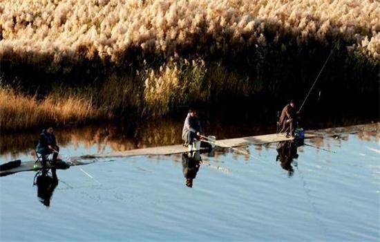 钓鱼高手是如何看天气来钓鱼的