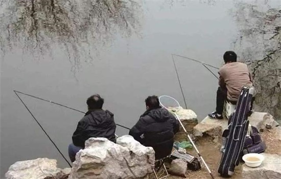 鱼儿如何寻找越冬地点,天气再冷也能爆护