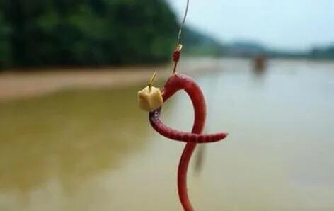 特色传统钓钓法-激流钓