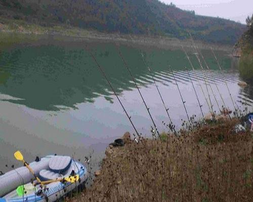 钓草鱼需要钓多深,才能有鱼上钩?