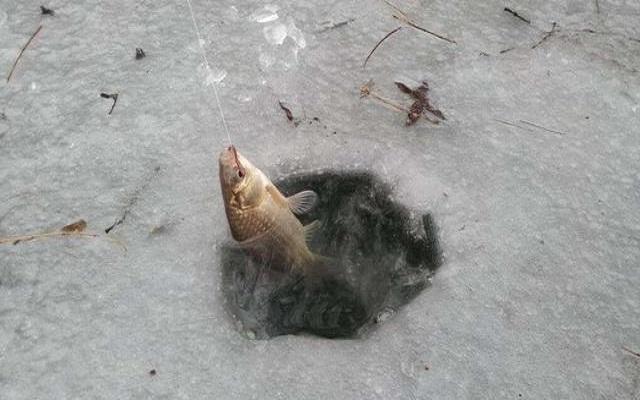 冰钓怎么找鱼窝?我来告诉你!