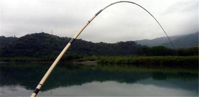 别纠结草鱼到底钓底还是钓浮,掌握分层法
