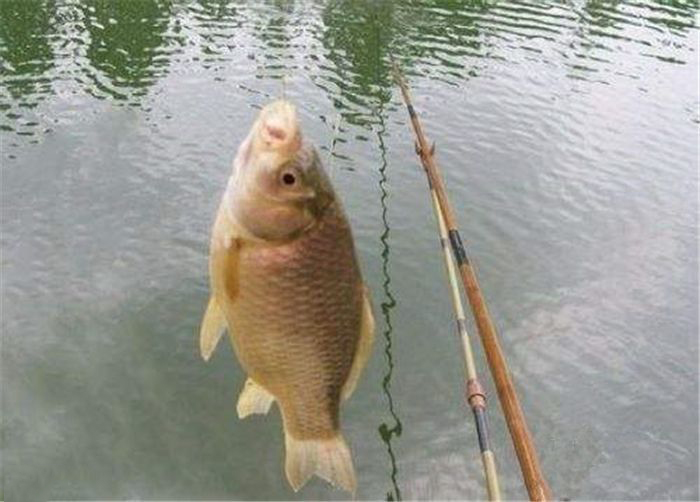 冬季钓鱼注意事项