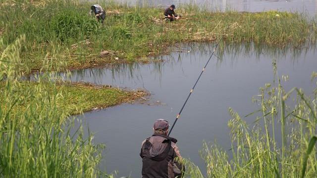 原来这2种钓法才是对付鲤鱼的法宝