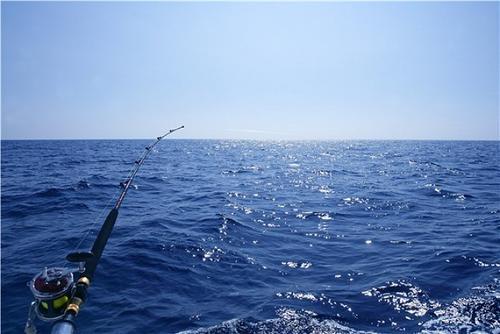 海钓用什么鱼饵最好?海钓鱼饵制作方法