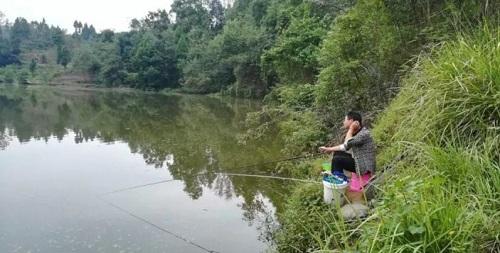浮漂没调好,冬钓鱼获总不好