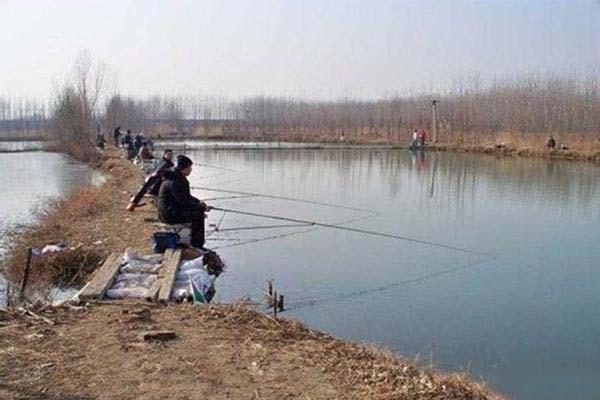 野钓主要针对的鱼群,什么样的鱼竿适合野钓