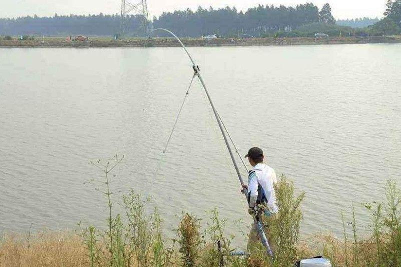 传统钓怎么在冬季钓鱼?要看四个搭配