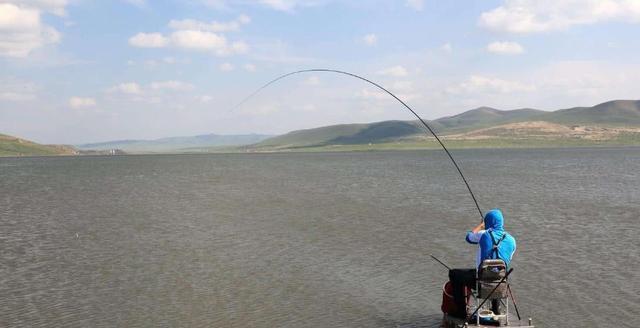 不少玩悬坠钓的钓友觉得不打窝就钓不上来鱼