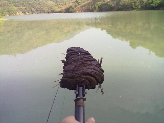 钓鱼高手传授,传统钓的八种钓法