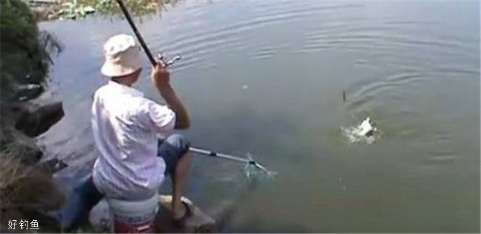 秋钓鲤鱼找鱼窝的诀窍,实用简单