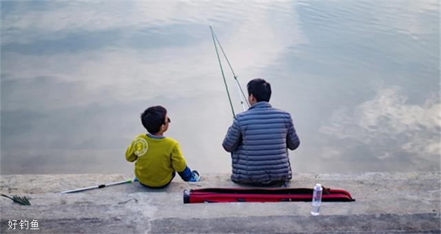 四季都可以钓的鱼,钓鲤鱼的小技巧