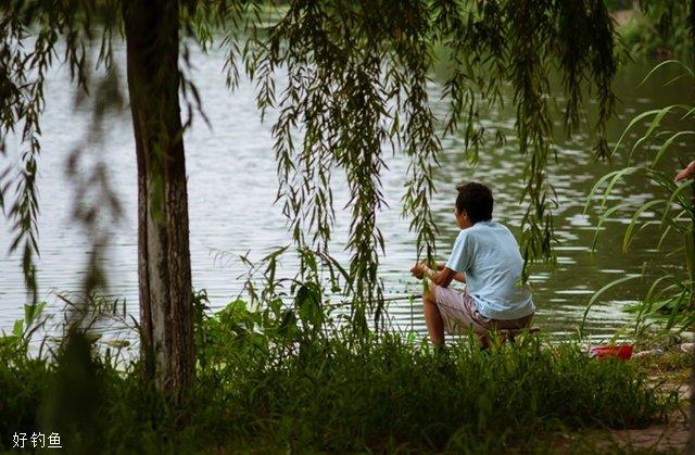 夏季钓鱼5个钓位的选择技巧_1