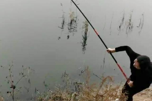 钓鱼挂底的原因?这些招数可以破解