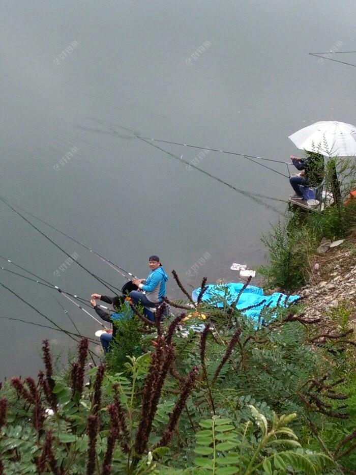 钓鱼视力不好,巧用醒目豆,浮漂不失灵敏性