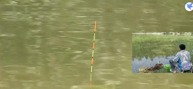 深度解析钓鱼看漂应如何正确抓口?提高中鱼率
