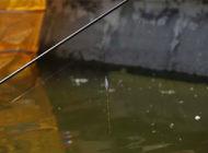 高手野外钓鱼调漂经验分享