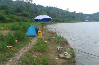 水库钓鱼的注意事项及钓鲤鱼鲫鱼的技巧