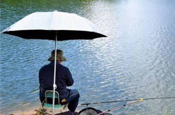 野外钓鱼,青鱼和草鱼的用饵与打窝,有哪些方法?