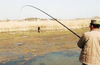 传统钓法钓草洞的钓位选择及逗钓技巧