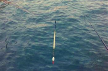 如何避免小鱼闹窝?先了解调漂和看漂相