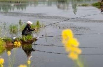 春季钓鱼的七个窍门与时机讲解