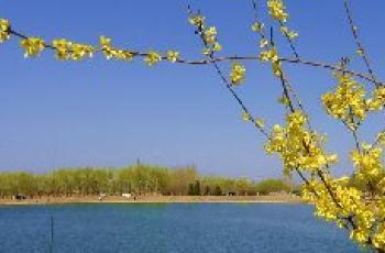 春钓技巧之掌握钓鱼的最佳时期