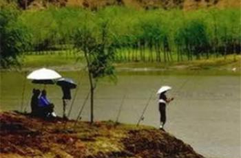 夏季下雨天气降温后钓鱼有哪些诀窍?