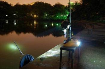 夏末初秋野外夜钓鲫鱼的钓具配置和用饵技巧