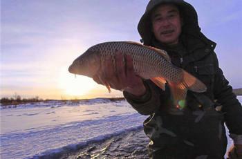 冬天钓鱼这样打窝,才能够事半功倍