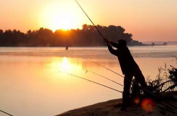 夏季浮漂调钓秘诀,解析五种情况的调钓方法