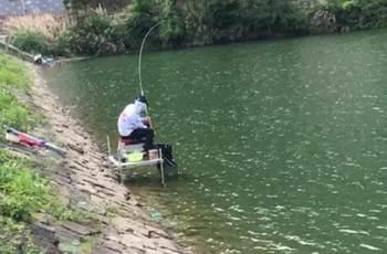 在夏季,野钓大草鱼时的钓法招式