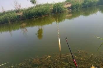 台钓准确调漂的3大要素,调漂精确渔获更多