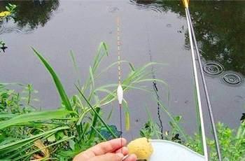 钓鱼调漂技巧:想要调漂更准确,这三点绝对不能忽视