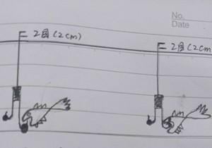 台钓子线的长度与钩距的长度分析