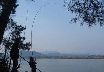 深水水库钓鱼的体会以及建议